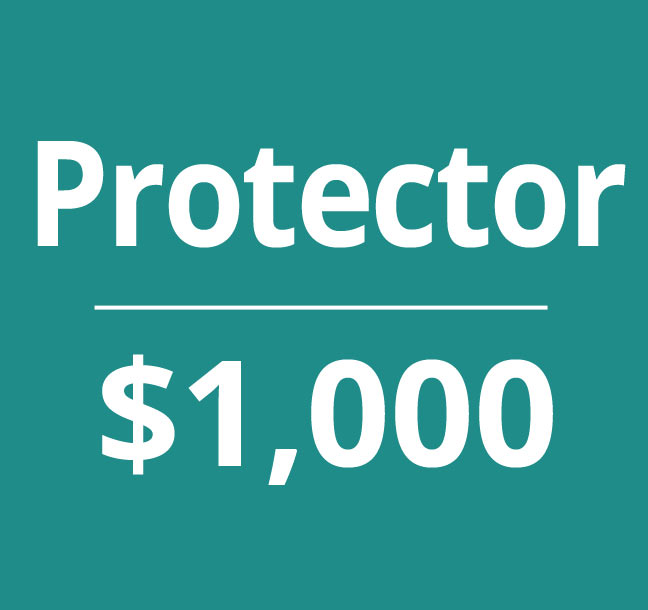 donate-protector-lg